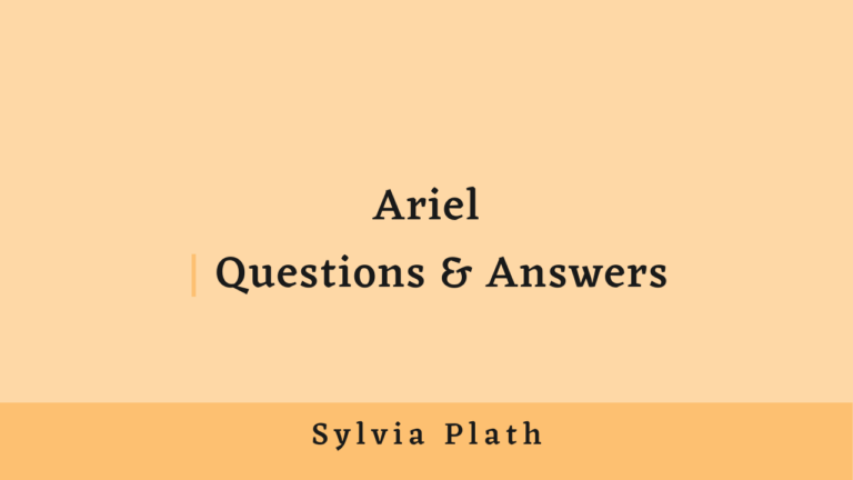 Ariel | Questions & Answers