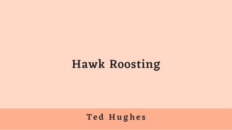 Hawk Roosting | Summary and Analysis