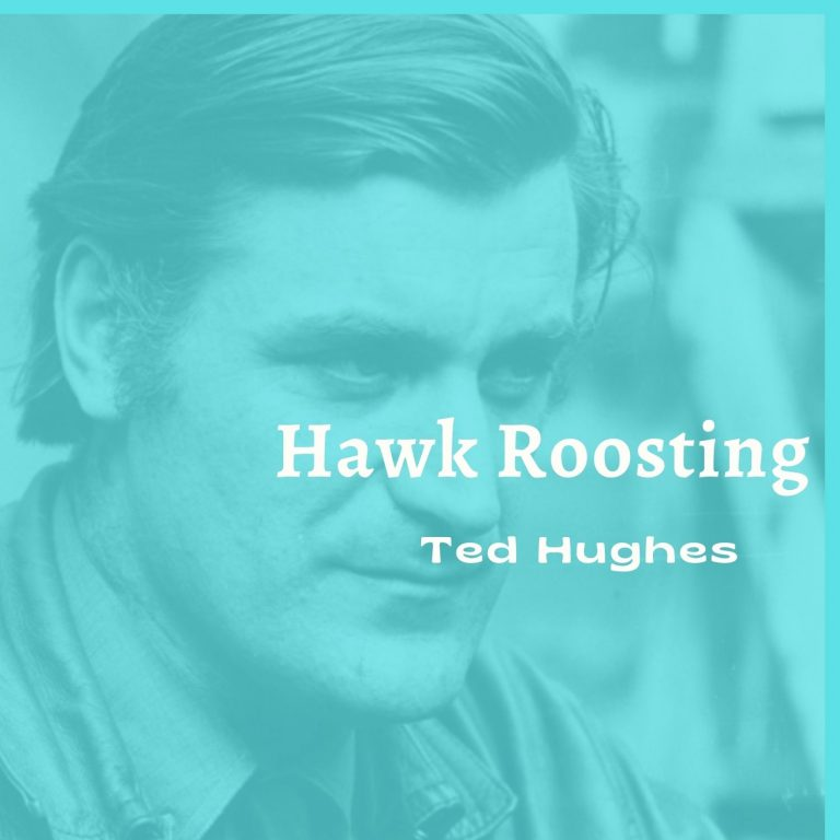 """""""Hawk Roosting"""" Summary and Analysis"""