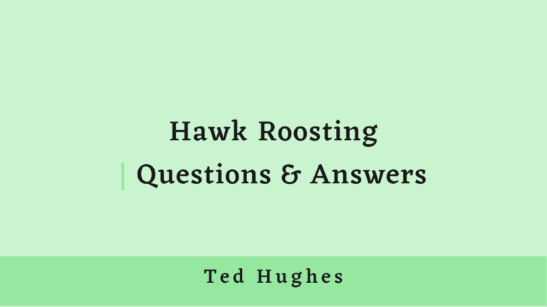 Hawk Roosting | Questions & Answers