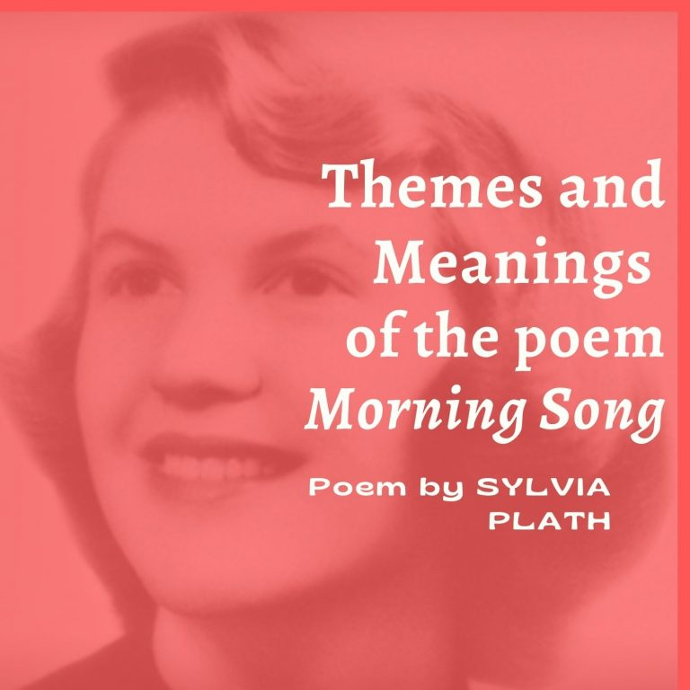 Morning Song: Themes and Meanings